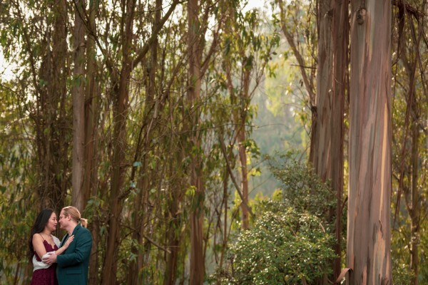 Engagement photo of couple in Eucalyptus grove